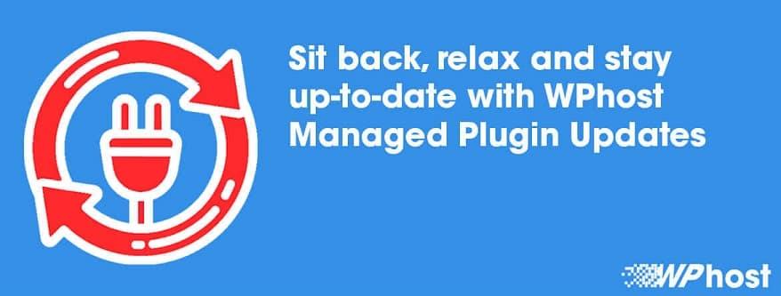 WordPress Managed Plugin Updates