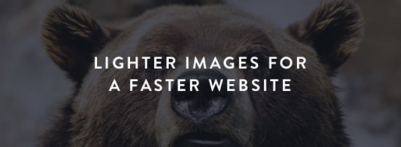 Optimise every image including your JPGs, PNGs, PDFs & GIFs